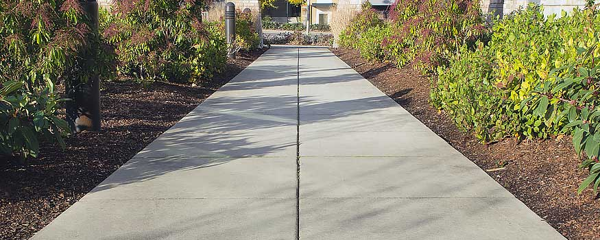 Commercial Landscape Services