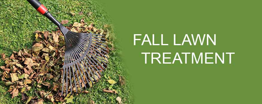 Fall Lawn Treatment
