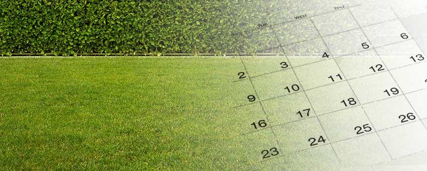 calendar and grass