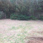 dirt backyard in need of backyard hardscape designs