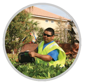 Maintenance Landscaping Services