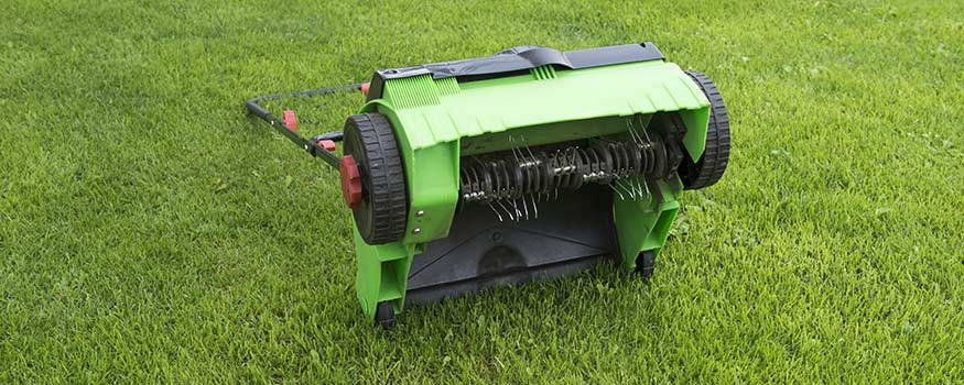 when should you aerate your lawn