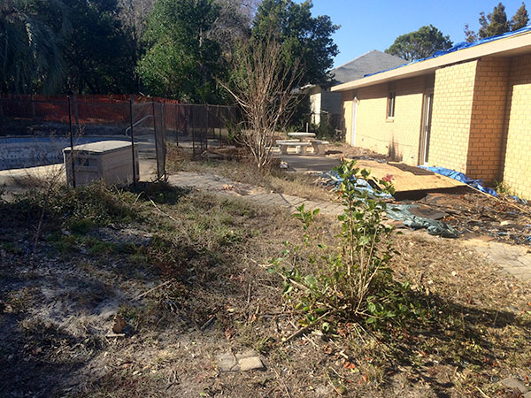 neglected backyard in need of new residential landscape