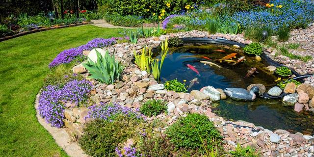 Backyard Ponds how to create an awesome backyard pond - executive landscaping, inc.