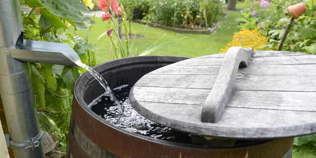 Recycling Rainwater For Landscaping Executive
